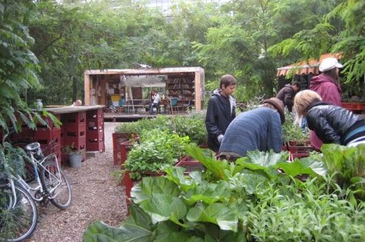 Prinzessinnengarten: gardening