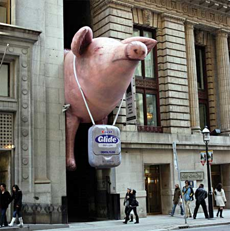 Glide Pig