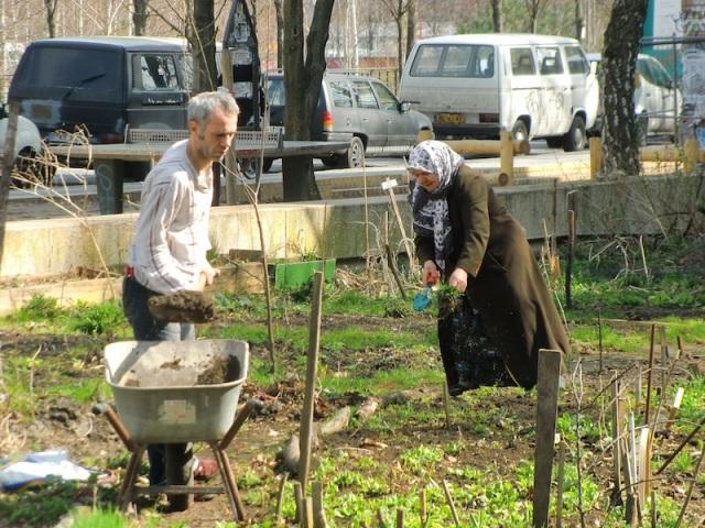 A couple cultivating their plot at Ton Steine Gärten