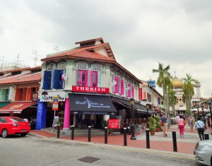 2014_11_17_Singapur-Trip - Little India (1) Best Of